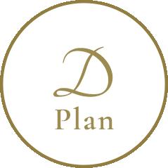 Dplan